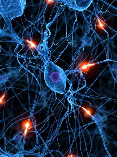 unobrain es la primera plataforma de brain fitness