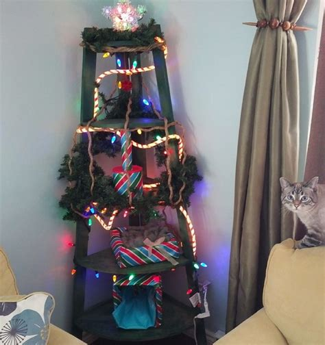 xmas tree made out of cats how to make a cat friendly alternative to a tree catster