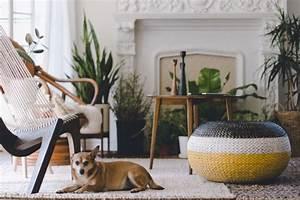 Welche Pflanzen Sind Für Hunde Giftig : welche zimmerpflanzen sind f r hunde und katzen giftig bild der frau ~ Watch28wear.com Haus und Dekorationen