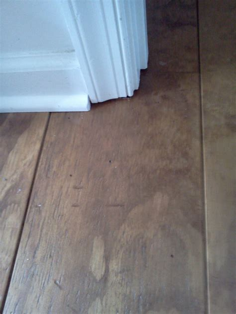 flooring cheap wide plank distressed pine flooring cheap updated 2 5 17 addicted2projects
