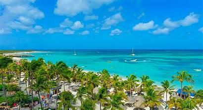 Aruba Beach Palm Barcelo Resort Seaspine Inclusive