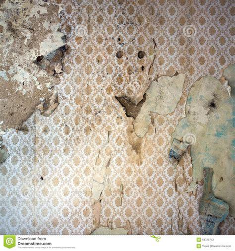 peeling wallpaper damaged wal stock photo image