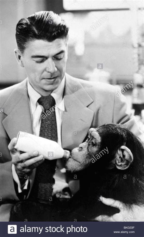 bedtime for bonzo 1951 ronald bfbz 001 stock photo royalty free image 29242515 alamy