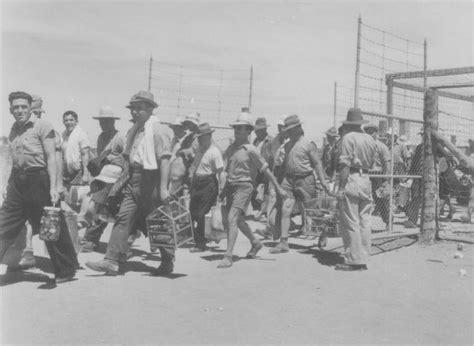camp  loveday internment camp located  barmera