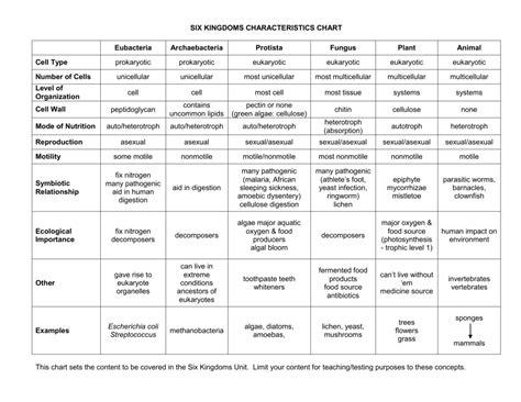 worksheet kingdom classification worksheet worksheet