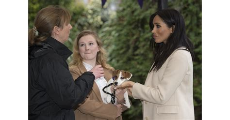 Meghan Markle Visits Mayhew January 2019 | POPSUGAR ...