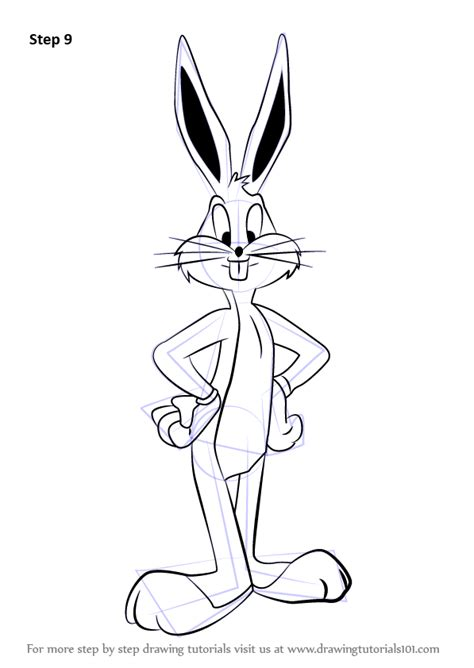 learn   draw bugs bunny  looney tunes looney