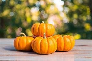5, Great, Health, Benefits, Of, Pumpkins