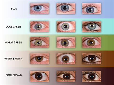 eye color chart green day all basketball scores info