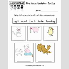Five Senses Worksheet For Kids  Free Kindergarten Learning Worksheet