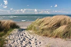 Fototapete Strand Ostsee : fototapete weg zum strand durch d nen an der ostsee bei heiligenhafen pixers wir leben um ~ Frokenaadalensverden.com Haus und Dekorationen