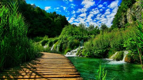 3d Wallpaper Nature For Mobile by 3d Hd Nature Wallpapers For Mobile