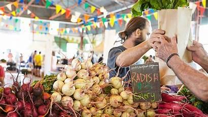 Market Farmers Saturday Evergreen Verduras Costos Frutas