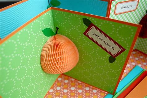 peach  images pop  cards honeycomb paper youre