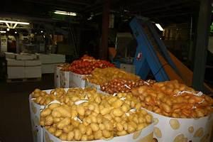 Kartoffeln Und Zwiebeln Lagern : gro es vertrauen in deutsche lebensmittel industrieverband agrar ~ Markanthonyermac.com Haus und Dekorationen