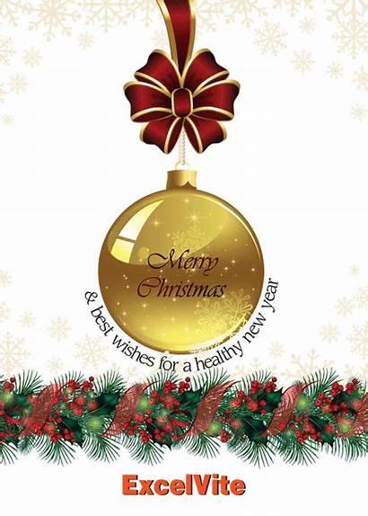 Greetings Happy Holidays Season Seasons Staff Wish