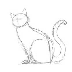 how to draw a cat how to draw a cat step by step for