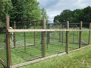 Dog fences for outside ideas design idea and decorations for Outside dog fence ideas