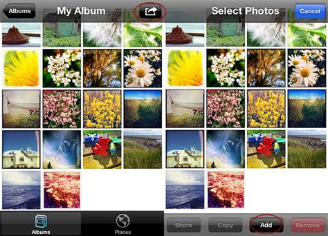 how to make a photo album on iphone how to create photo albums on the iphone appotography