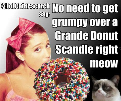 Donut Memes - lol cat show