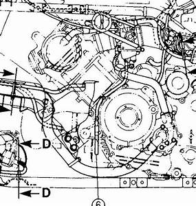 30 Kawasaki Prairie 300 Carburetor Diagram