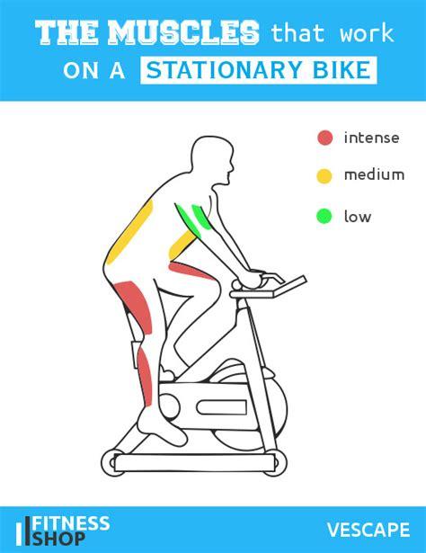 recumbent stationary bike 10 amazing health benefits of stationary bike