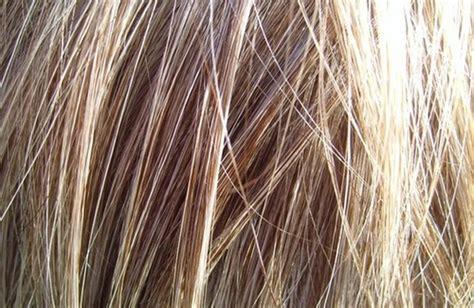 alimenti per capelli 5 alimenti per capelli belli e sani cure naturali it