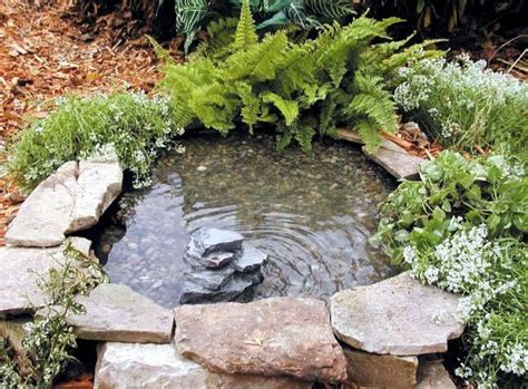 bed cusion create a mini garden pond in the mortar bed and replant