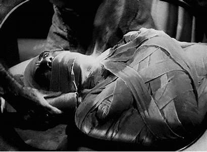 Mummy Boris Karloff Universal Gifs Monsters Invisible