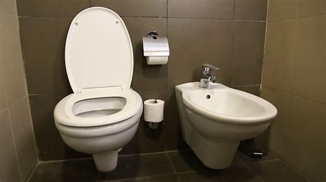 Toilet Bowl With Bidet by Toilet Bowl With Water And Tissue Toilet Sink And Bidet