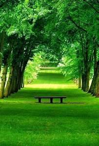 Beautiful, Peace
