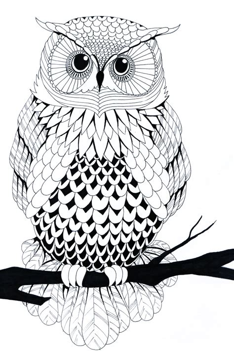 simple owl drawings black and white black and white owl by zakariaseatworld on deviantart
