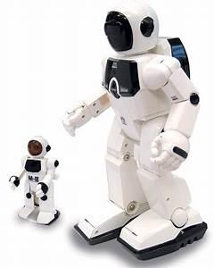 Silverlit Program a bot - Robots ar kontroles paneli ...