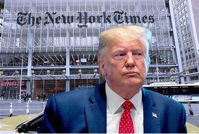 Trump York Times Fired Donald Salon November