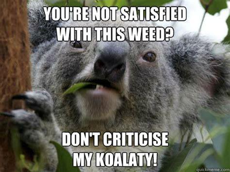 Angry Koala Meme - evil koala bear meme www pixshark com images galleries with a bite