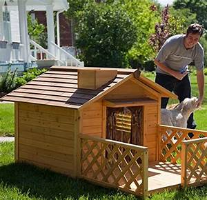 the best large dog houses for big dogs great danes With biggest dog kennel