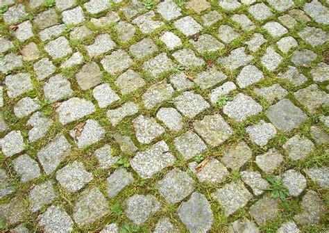 Unkraut In Den Fugen by Natursteinpflaster Unkraut In Den Fugen