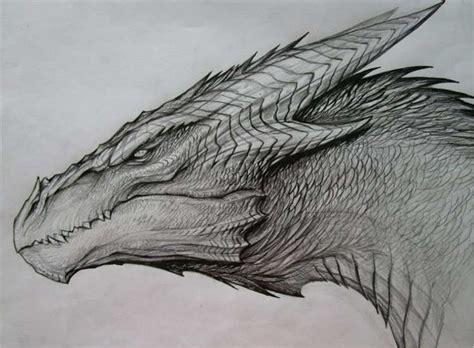 dragon drawing designs   creative template
