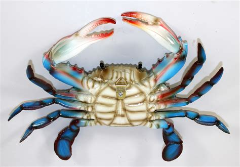 Decorator Crabs Are Bottom Dwelling Or by 6 Inch Maryland Blue Crab Wall Decor Resin Auctions