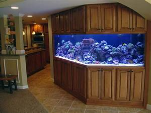 How to Safely Move a Saltwater Aquarium Movers Quotes