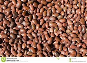 Brown Beans - Healthy Fiber Food Royalty Free Stock ...