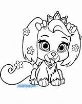 Daisy Pets Coloring Palace Haven Whisker Colorear Coloring4 Disneyclips Pintar Template Guardado Desde sketch template