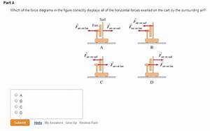 Solved  Which Of The Force Diagrams In The Figure Correctl