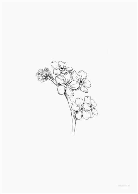 Printables - Forget-me-nots   Forget me not tattoo, Body
