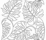 Tropical Leaf Drawing Coloring Rainforest Pages Printable Plants Flowers Adult Getdrawings sketch template