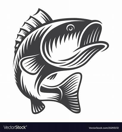 Bass Jumping Clipart Fish Concept Library
