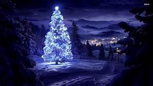 Glowing Star On Snowy Tree Wallpaper