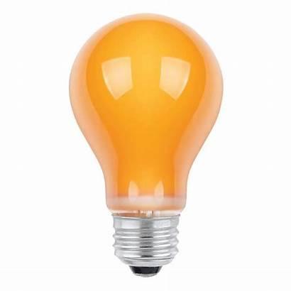 Incandescent Watt A19 Bulb Bulbs Specialty Orange