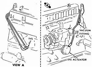 250 Chevy 6 Cylinder Engine Diagram  U2022 Downloaddescargar Com