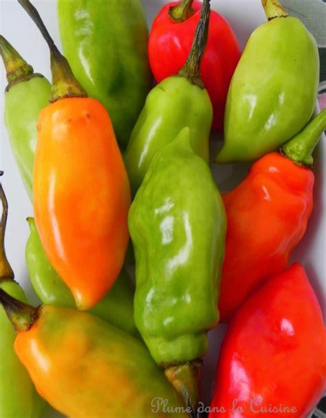 piment cuisine le piment végétarien une plume dans la cuisine